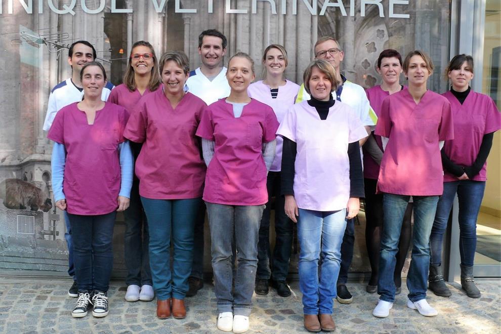 Equipe clinique vétérinaire de chartres