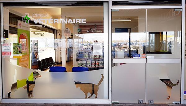 Clinique v t rinaire chartres architecture veterinaire - Cabinet de radiologie la madeleine ...